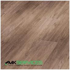 African Grey Oak